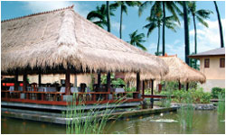 patrabali_floatingrestaurant