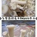 白雪菇成長日記3