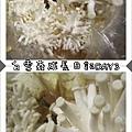 白雪菇成長日記2