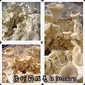秀珍菇成長日記3