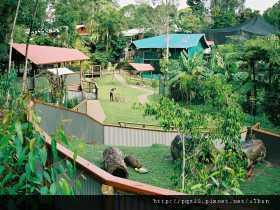 Kuranda Koala GardensOverview kkg