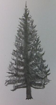A06.jpg