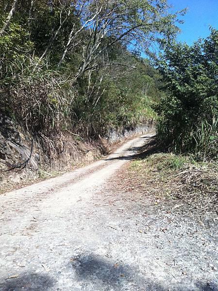 要去莊園的路很崎嶇