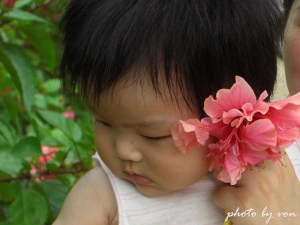 小鴨子_20100808056新社安妮公主.jpg