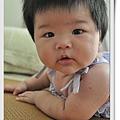 小鴨子_20100710037.jpg