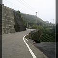 慵懶的小黑與蜿蜒的路成強烈的對比