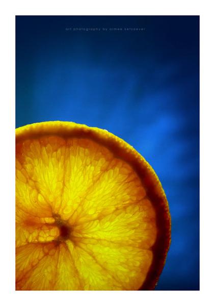 Citrus_Still_Life_II_by_aimeelikestotakepics.jpg