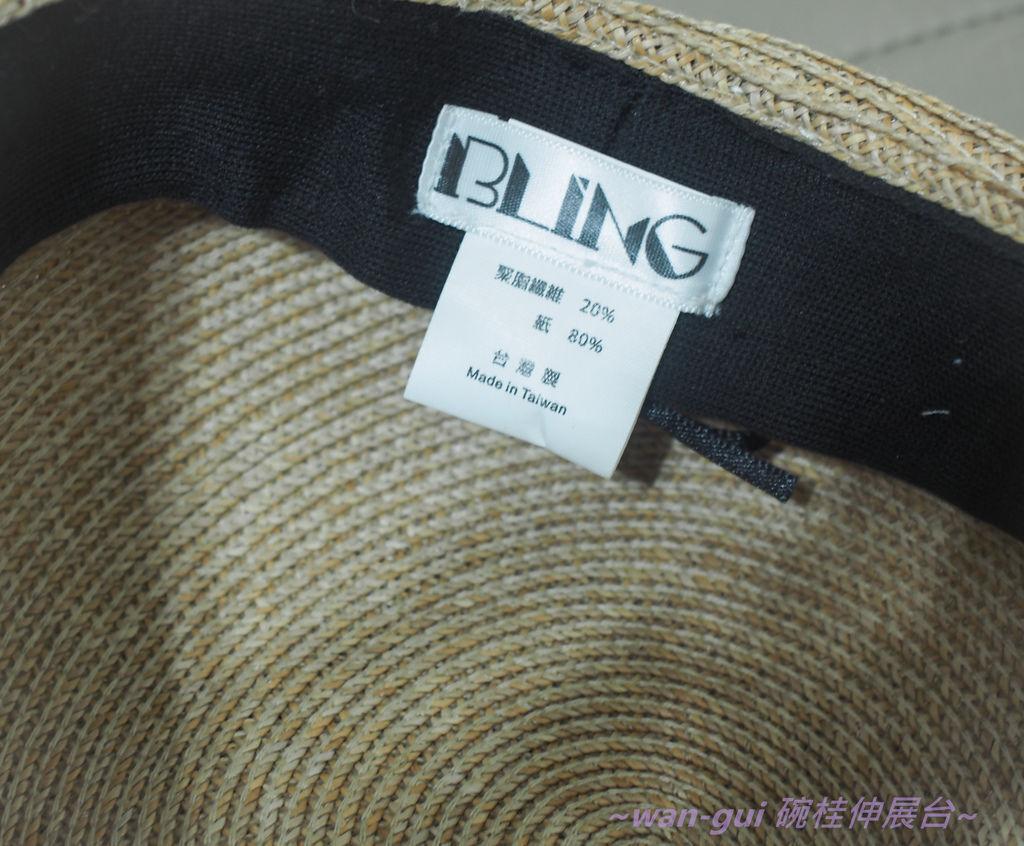 PA106150.JPG