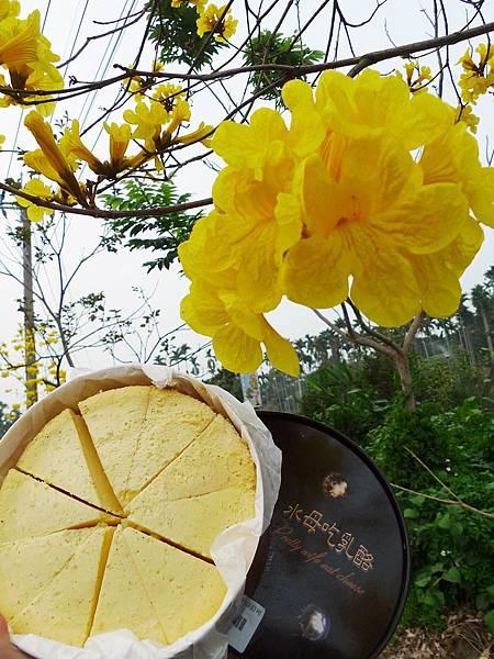 好吃南投竹山美食全攻略,當地人都愛吃的南投竹山美食在這裡