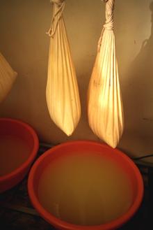 乳酪製作3.png