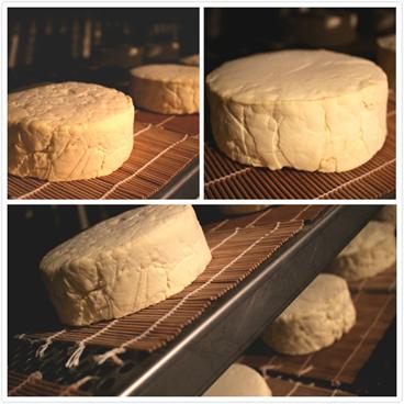 乳酪製作5.png
