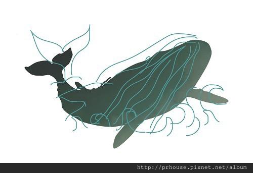 大觀自若鯨魚
