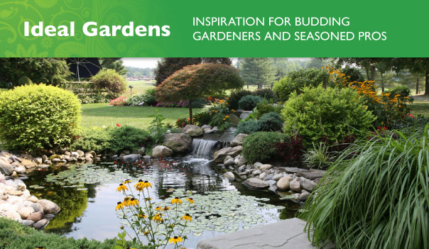 21-10-11_16-55-22_new_tabs-gardens