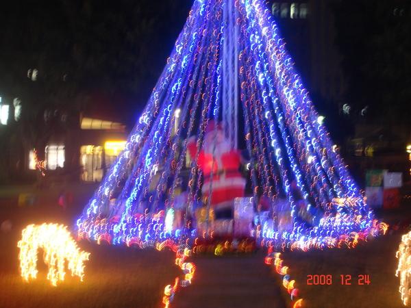 christmas tree 091.jpg