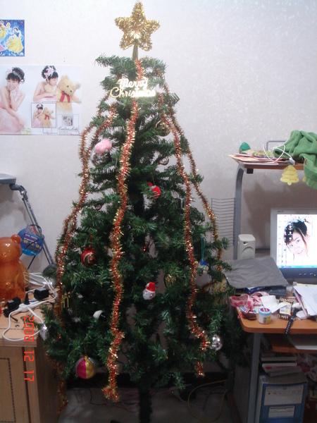 這次的聖誕樹