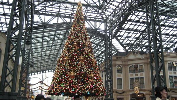 哈哈~Disney的聖誕樹
