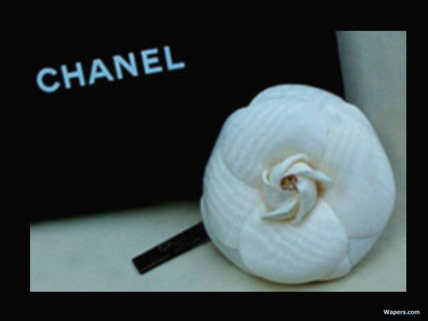 Chanel03.jpg