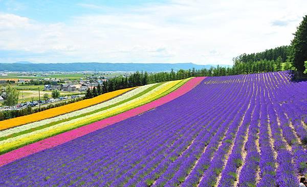 雙向國際旅行社北海道評價