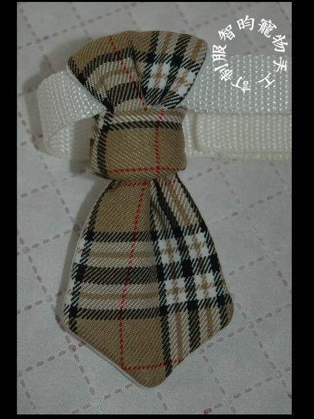 領帶12.jpg