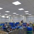 生產作業區 PD-PL 36W