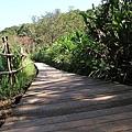 池塘旁的步道