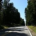 2013-06-30 09.58.03.jpg