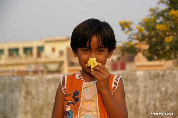 PropcIndia (8).JPG