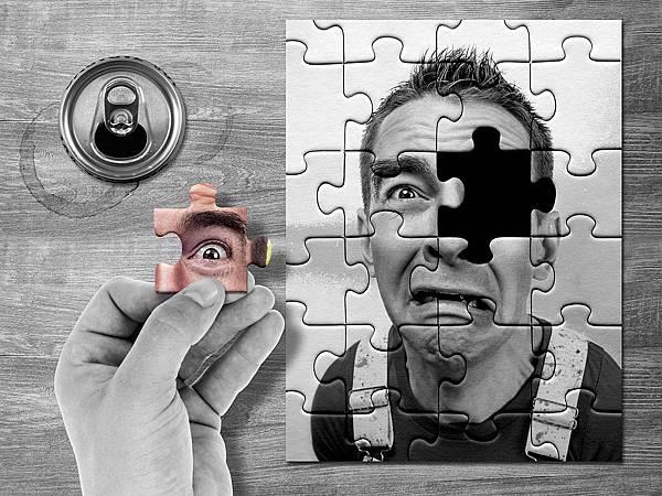 puzzle-1506191_960_720.jpg