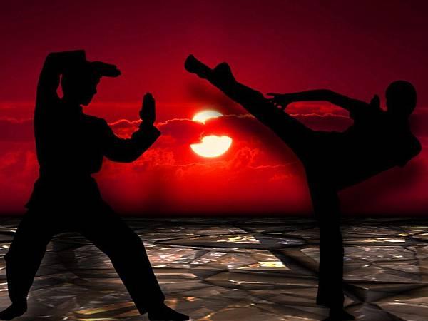 martial-arts-291049_960_720.jpg