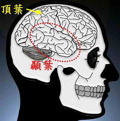 skull-and-crossbones-1739992_960_720.jpg