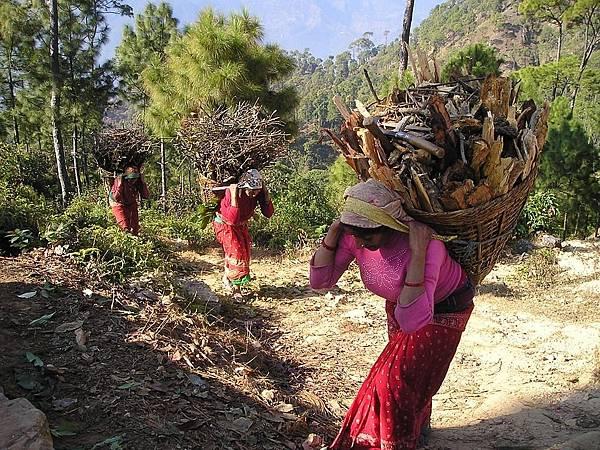 nepal-390_960_720.jpg