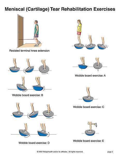 knee meniscus2