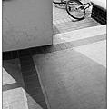 20080404_09.jpg