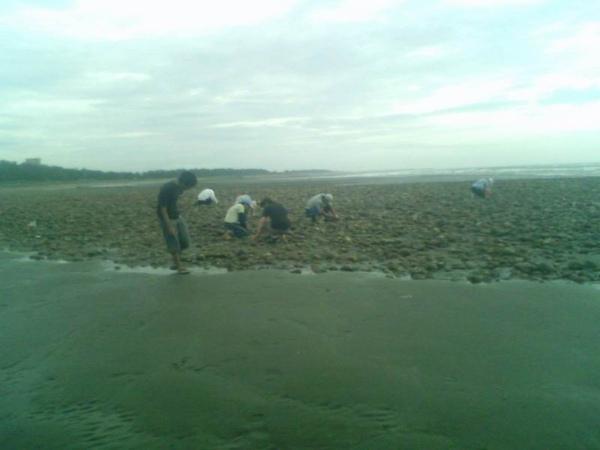 海邊4.jpg