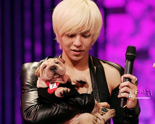 G-Dragon&家號
