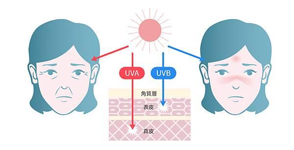 光老化紫外線皮膚光老化光老化ptt彩衝光m22755皮秒雷射02.jpg