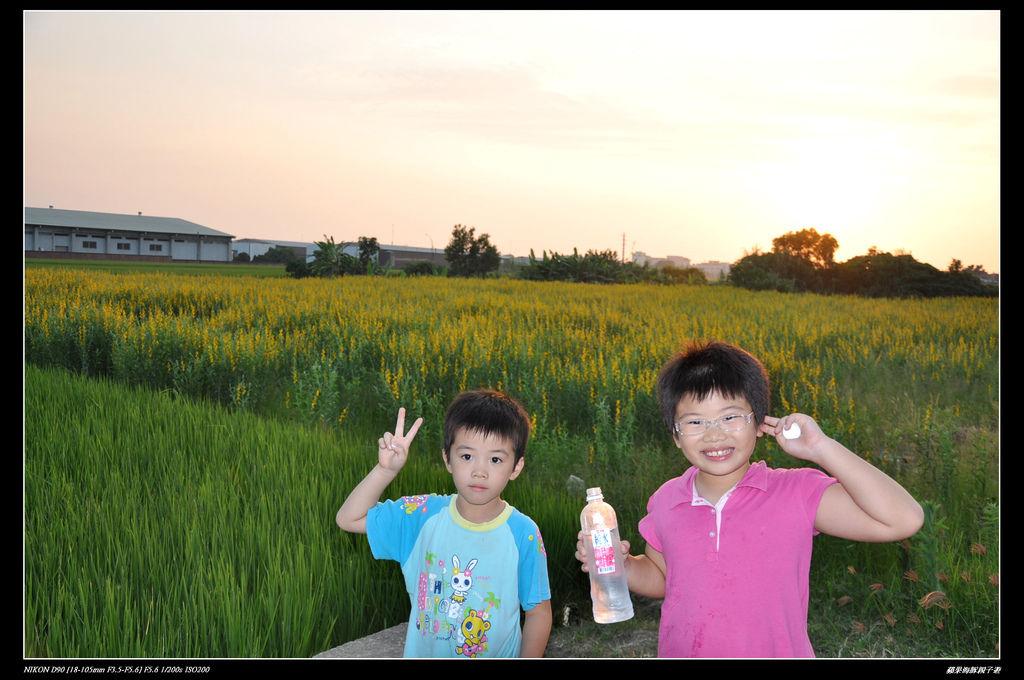 201110官箱也花海 024.jpg