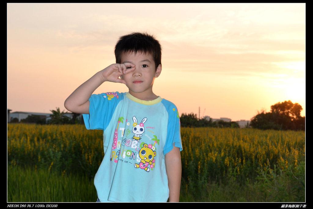 201110官箱也花海 027.jpg