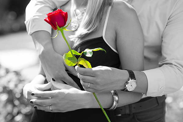 red-rose-1461043_1920.png