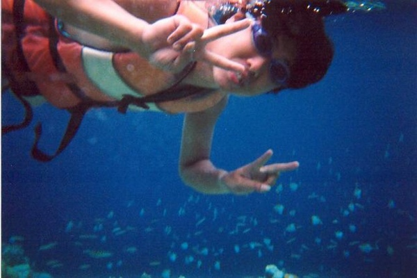 沒和水母一起游過泳吧!