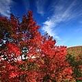 pcolors_0046.JPG