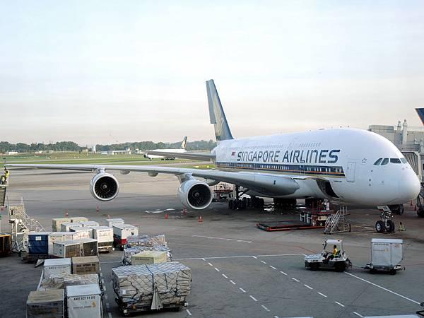 新航的空巴A380