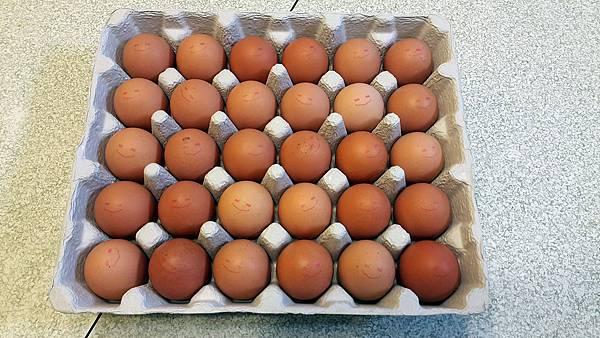 Egg_3.jpg