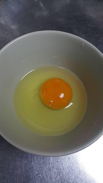 Egg_6.jpg