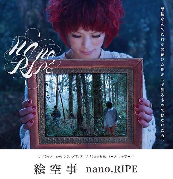 nano.RIPE-TOP
