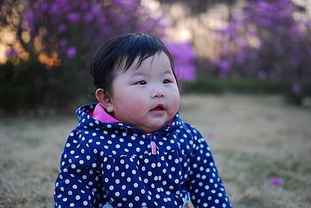 baby-320655_640.jpg