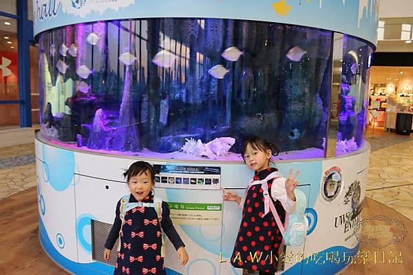 20150227@台場迪士尼商店富士電視台-26.jpg