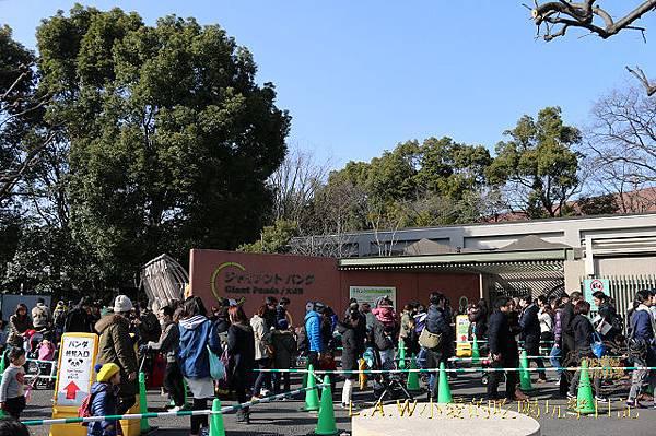 20150228@上野動物園-04.jpg