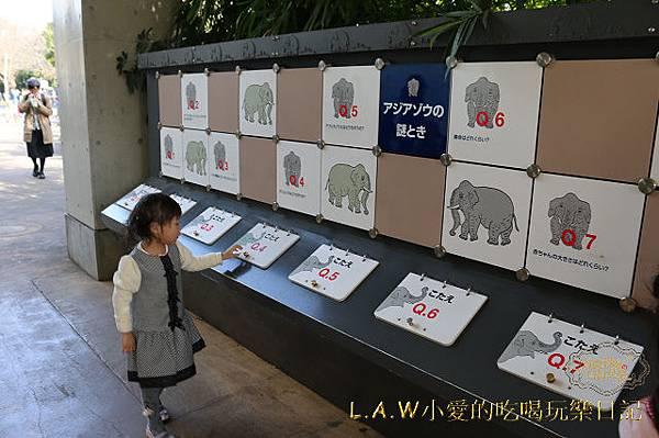 20150228@上野動物園-08.jpg