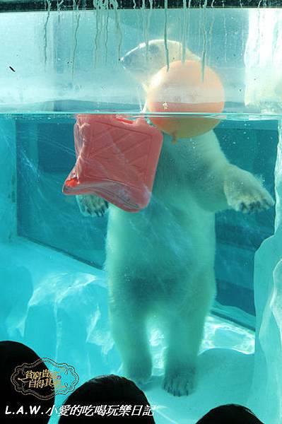 20150228@上野動物園-21.jpg